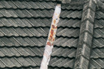 Rja ali poškodbe, zlasti okrog obrob in nosilcev