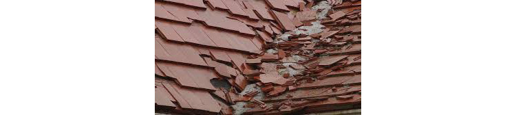 Priljubljeni kategoriji strehe, ki vas lahko nepričakovano razočarata